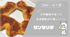 天然酵母を使用した長時間発行の優しいパン