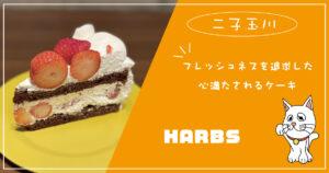 フレッシュネスを追求した心満たされるケーキ