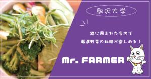 Mr.Farmer-緑に囲まれた店内で、厳選された新鮮で美味しいお野菜料理が楽しめる